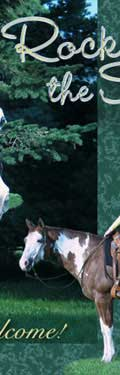 Show Horse Training, Paint Horses and Quarter Horses for sale